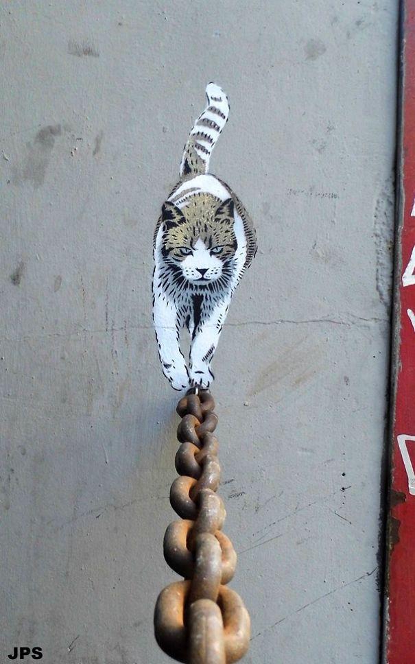 jps-cat